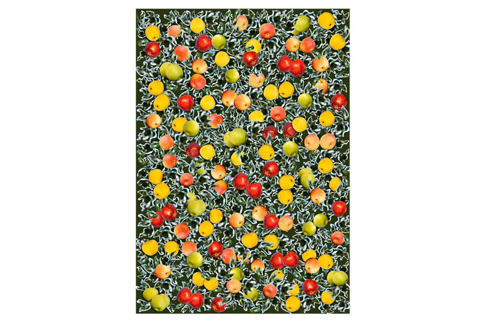 плодове.jpg